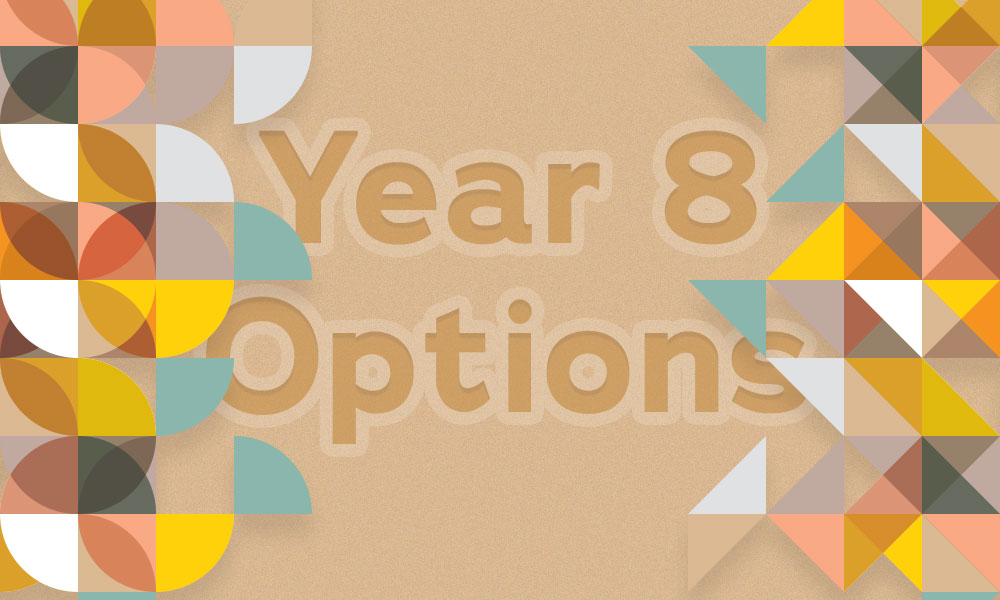 Year 8 options - banner